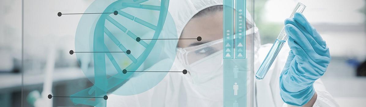 Test-DNK