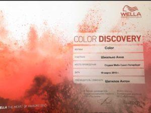 Color Discovery Shmalko Anna 19032018